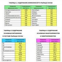 Таблица на полезни вещества в Боров прашец